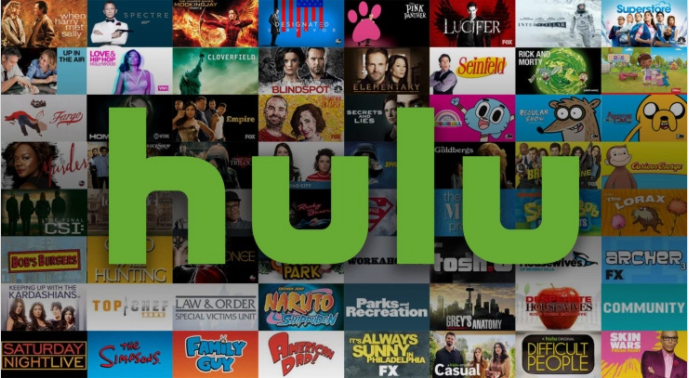 hulu acquisition video genome project